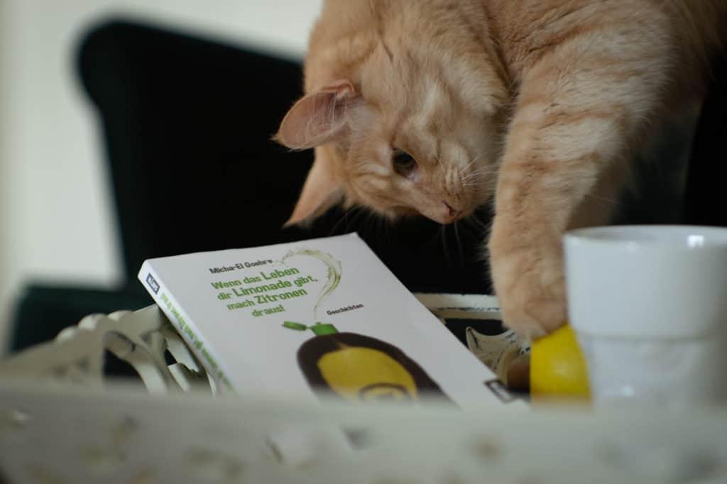"""Tablett mit Buch """"Wenn das Leben dir Limonade gibt, mach Zitronen draus!"""" von Micha-El Goehre und Kaffetasse und Katze"""