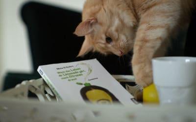 Buchrezension: Micha-El Goehre – Wenn das Leben dir Limonade gibt