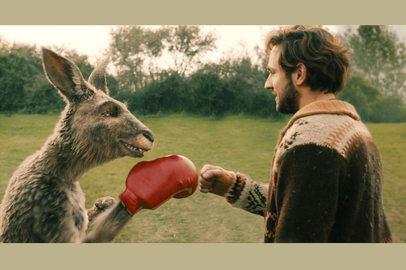 Marc-Uwe Kling und Känguru mit Boxhandschuhen - Pressebild zur Rezension des Kinofilms